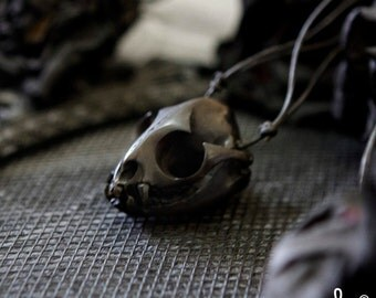 Black Cat Skull Pendant Hand-craft Made of Horn   Perfect for Halloween