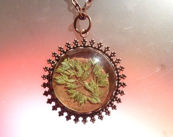 Real Pressed Grass Round Glass Vintage Style Copper Necklace