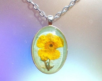 Real Pressed Flower Buttercup Wildflower Silver Plated Pendant Necklace