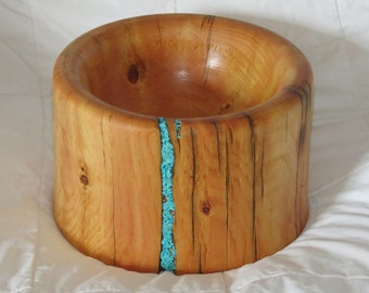 Ancient Bristlecone Pine, bowl, turquoise, live edge. (FREE SHIPPING)