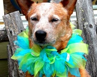 Custom Party Dog Collar, Custom Birthday Dog Collar, Custom Ribbon Dog Collar, Custom Parade Dog Collar, Custom Wedding Dog Collar, Dog TuTu