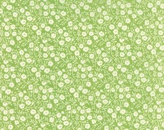 Moda Hello Darling Dainty Green (55117 25) - 1 yard