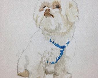 Watercolor Commission - Pet Portrait (from photo)