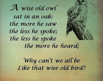 A Wise Old Owl digital