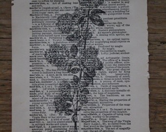 Vintage Floral Dictionary Print, Vintage Dictionary Print, Wall Art