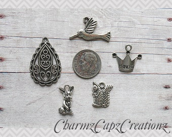 MINI Charm Set / 5 Pieces / Sofia the First Inspired / Set Lot Collection / Jewelry Scrapbooking Crafts /Bird Squirrel Princess Crown Amulet