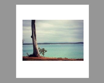 Australiana | National Park | Noosa | Sunshine Coast | Australia | Print | Mounted