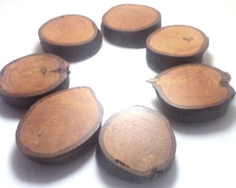 Wooden magnets for fridge magnets, olive wood, ultra strong magnet, 7p CAOBA / MAHOGANY COLOUR