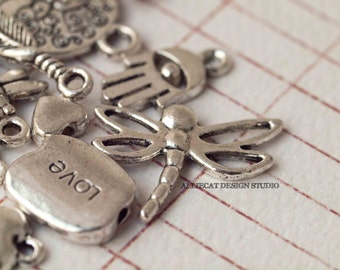 14 Silver Plate Mix Small Charms (F0143)