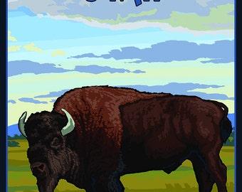 Antelope Island, Utah - Bison Scene (Art Prints available in multiple sizes)