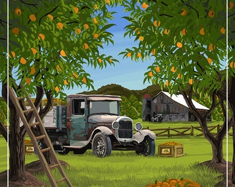 Florida - Orange Grove with Truck (Art Prints available in multiple sizes)