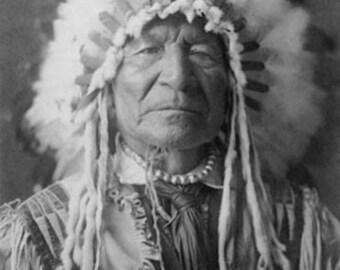 Sitting Bear, Arikara Native American Man Curtis Photograph (Art Prints available in multiple sizes)