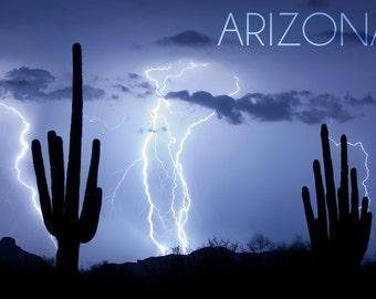 Arizona - Lightning Storm and Cactus Photograph (Art Prints available in multiple sizes)