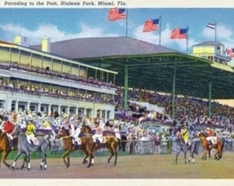 Miami, Florida - Hialeah Park; Parading to the Post Scene (Art Prints available in multiple sizes)