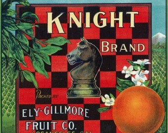 Los Angeles, California - Knight Brand Citrus Label (Art Prints available in multiple sizes)