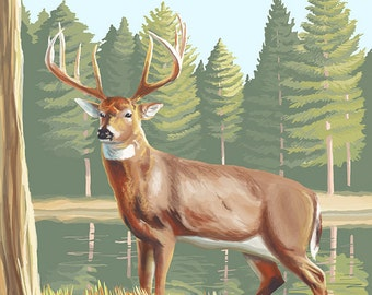 Ely, Minnesota - White Tailed Deer (Art Prints available in multiple sizes)