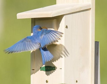 Duncraft Eastern Bluebird House