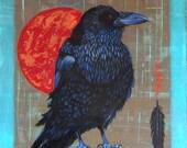 CROW MAGNUM -  raven, crow, native american, indian, corvid, love