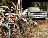 1966 Dodge Charger in a shed with a line of Bikes and a panther on top Photograph