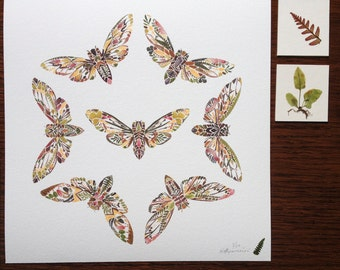 "Seven Cicadas Pressed Fern Giclée Print - Limited Edition 10""x10"" - Herbarium Botanical Insect Artwork"