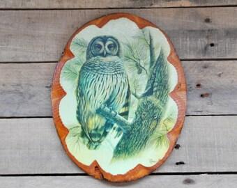 Vintage Owl Wood Slice Wall Plaque