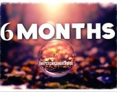 6 MONTHS Tarot & Oracle Reading in LIVE VIDEO and .Jpg