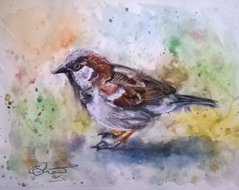 Beautiful Sparrow - Original A4 Watercolour Painting! Garden Bird Art!