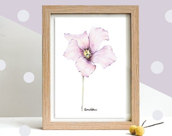 Botanical Art, Drawing of a Lisianthus Flower in Pink and Purple | Original Pencil Art