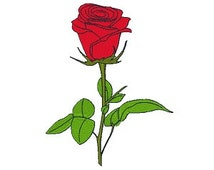 Red Rose Machine Embroidery Design, Flower Design, Rose Embroidery, Filled Stitch, 4X4 5X7, Instant download