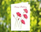 Print at Home Birthday Card: Watercolor Poppy Card - Poppy Birthday Card - Red Flower Birthday Card - Printable Poppy Card - Card Download