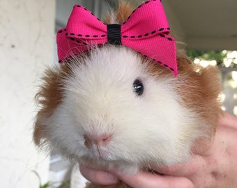 Pet bows (pink and black)