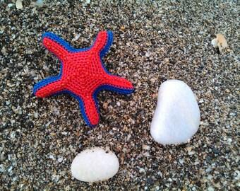 Brooch, clasp, starfish