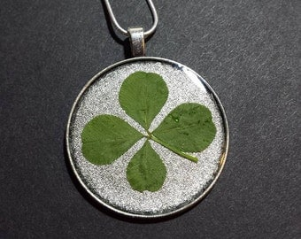 Real Four leaf clover pendant necklace jewlery real 4 leaf clover rare