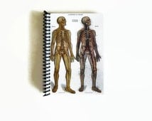 Anatomical Chart - Cute Spiral Notebook - Pocket School Journal - 4x6in