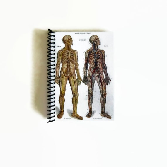 Spiral Notebook Anatomical Chart, Blank Sketchbook Natural History, Back to School, Pocket Writing Cute Spiral Bound Journal, A6 School Gift
