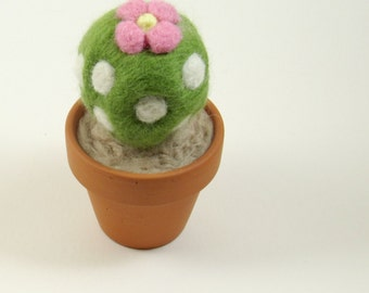 Needle Felted Small Flowering Cactus
