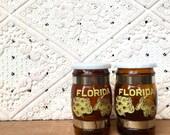 Vintage Set of Florida Salt & Pepper Shakers