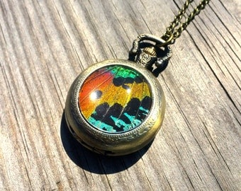 Real Sunset Moth Mechanical Pocket watch Necklace working Steampunk Pocketwatch moth patch preserved butterfly pressed butterfly rainbow