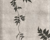 botanical print, monotoned art, pressed plant art