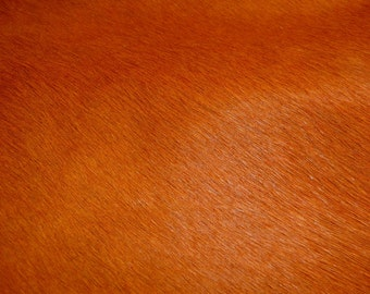 """Hair On Leather 12""""x12"""" Orange HOH Cowhide PeggySueAlso™"""