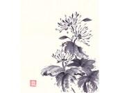 Chrysanthemum Ink Painting in Black and White Chinese Brush Artwork