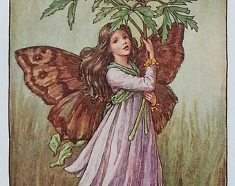 Mounted Flower Fairy Vintage Print 1930s Wind Flower (Wood Anenome) - CICELY MARY BARKER Flower Fairies Original Print Ready to Frame