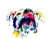 """Colorful Dog Painting - pitbull, boxer, mutt - """"Tongue Out"""""""