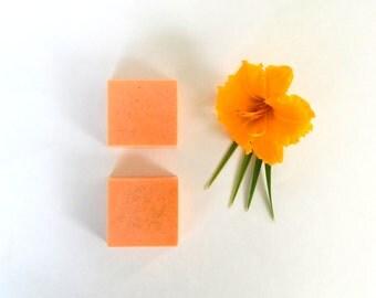 JAPANESE YUZU Soap Grapefruit Soap Shea Butter Homemade Soap Bar Soap Handmade Soap Orange Soap Citrus Soap Loofah Exotic Soap Gift Under 10