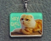 Hey Girl : Funny Cat porte-clés acrylique 1.5 inch Cute Kitty charme gaufres le chat