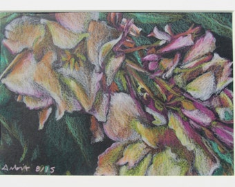 "Barcelona Roses - 5""x7"" Colored Pencil Drawing"