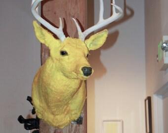 Taxidermy - Yellow Deer