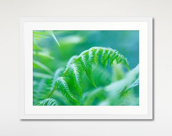 Nature Print, Fern Art, Framed Wall Decor, Green Leaves