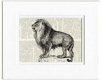 Lion II dictionary page print