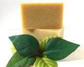 Organic Patchouli Botanical Cold Process Soap Bar | All Natural | Essential Oils | Moisturizing Lather | Handmade | Vegan | No Gluten - 4 oz